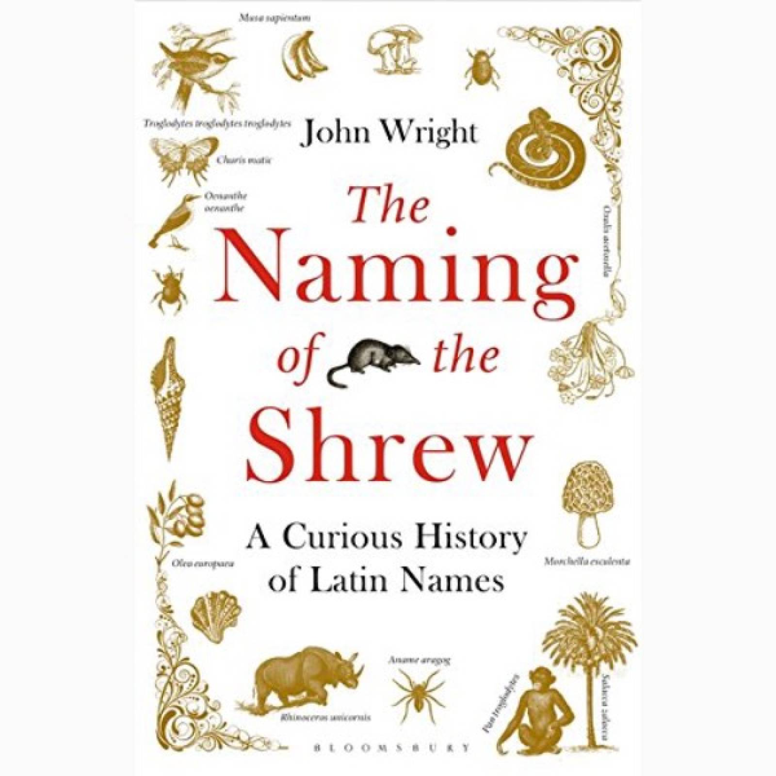 The Naming Of The Shrew - Paperback Book