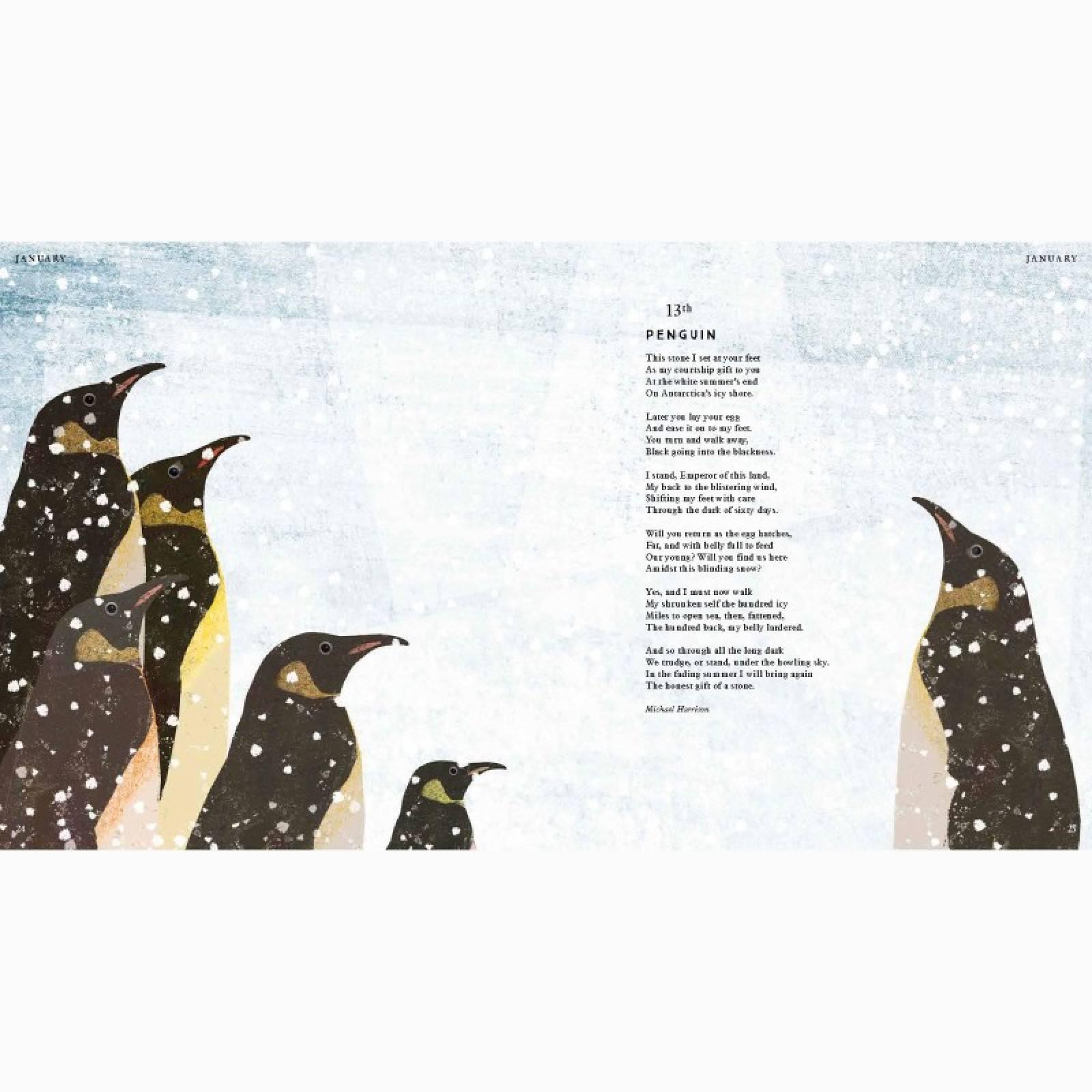 Tiger, Tiger, Burning Bright! (Animal Poems) - Hardback Book thumbnails