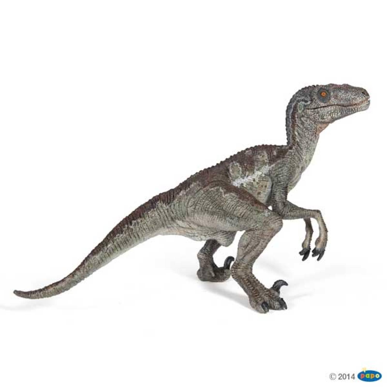 Velociraptor - Papo Dinosaur Figure