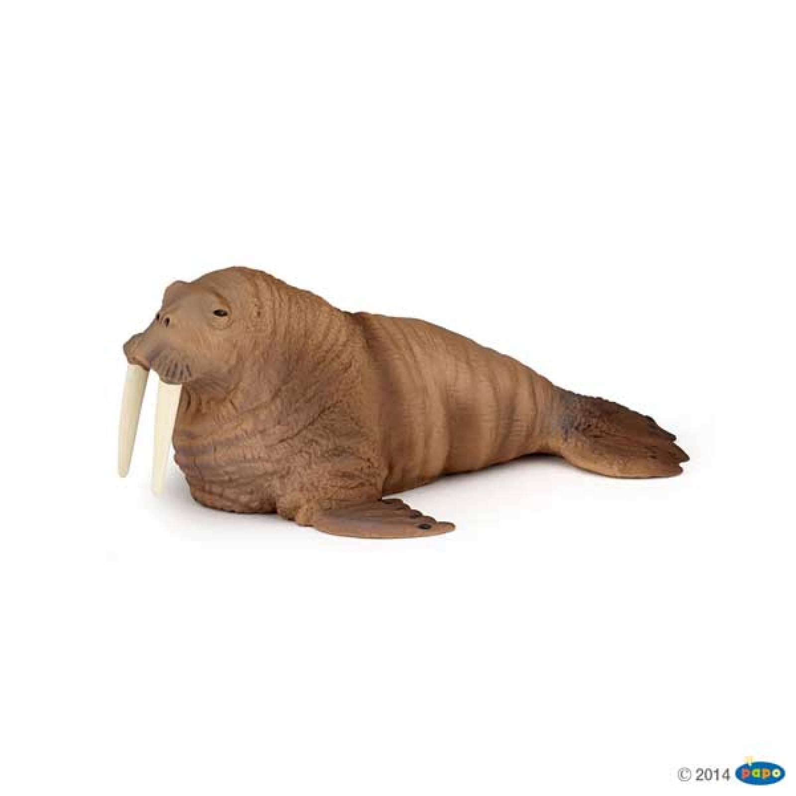 Walrus PAPO WILD ANIMAL