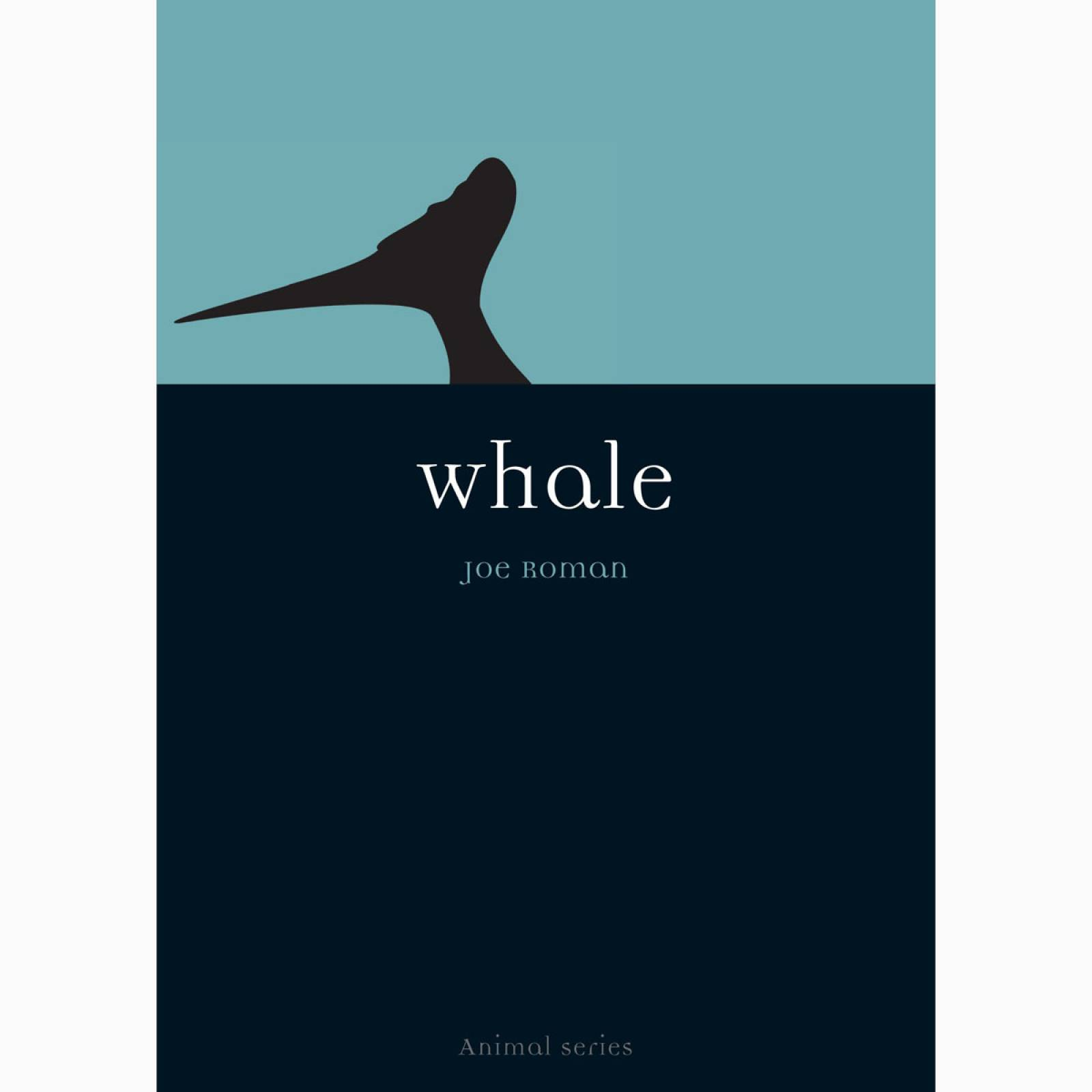 Whale By Joe Roman - Paperback Book