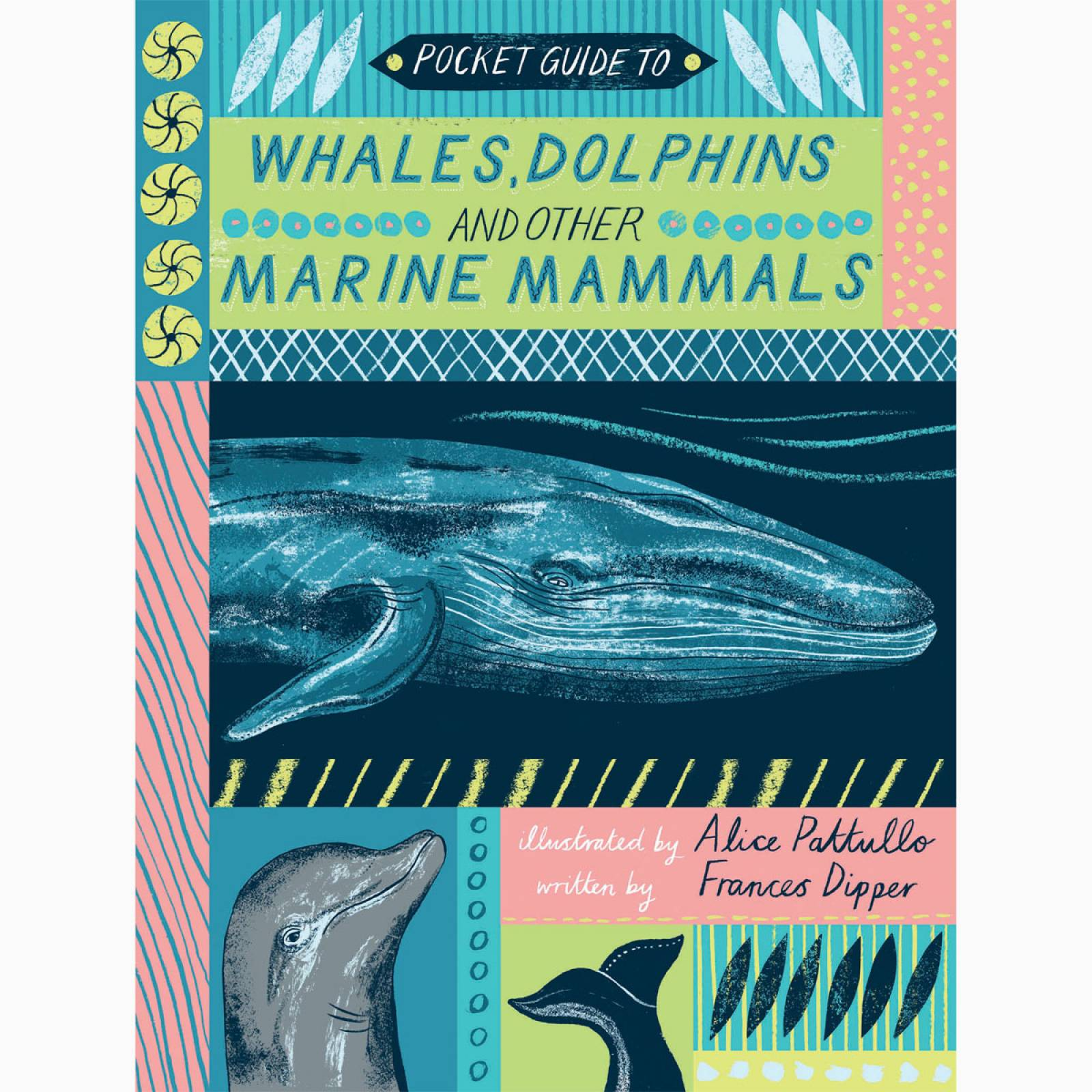 Pocket Guide To Whales Dolphins and Other Marine Mammals Book