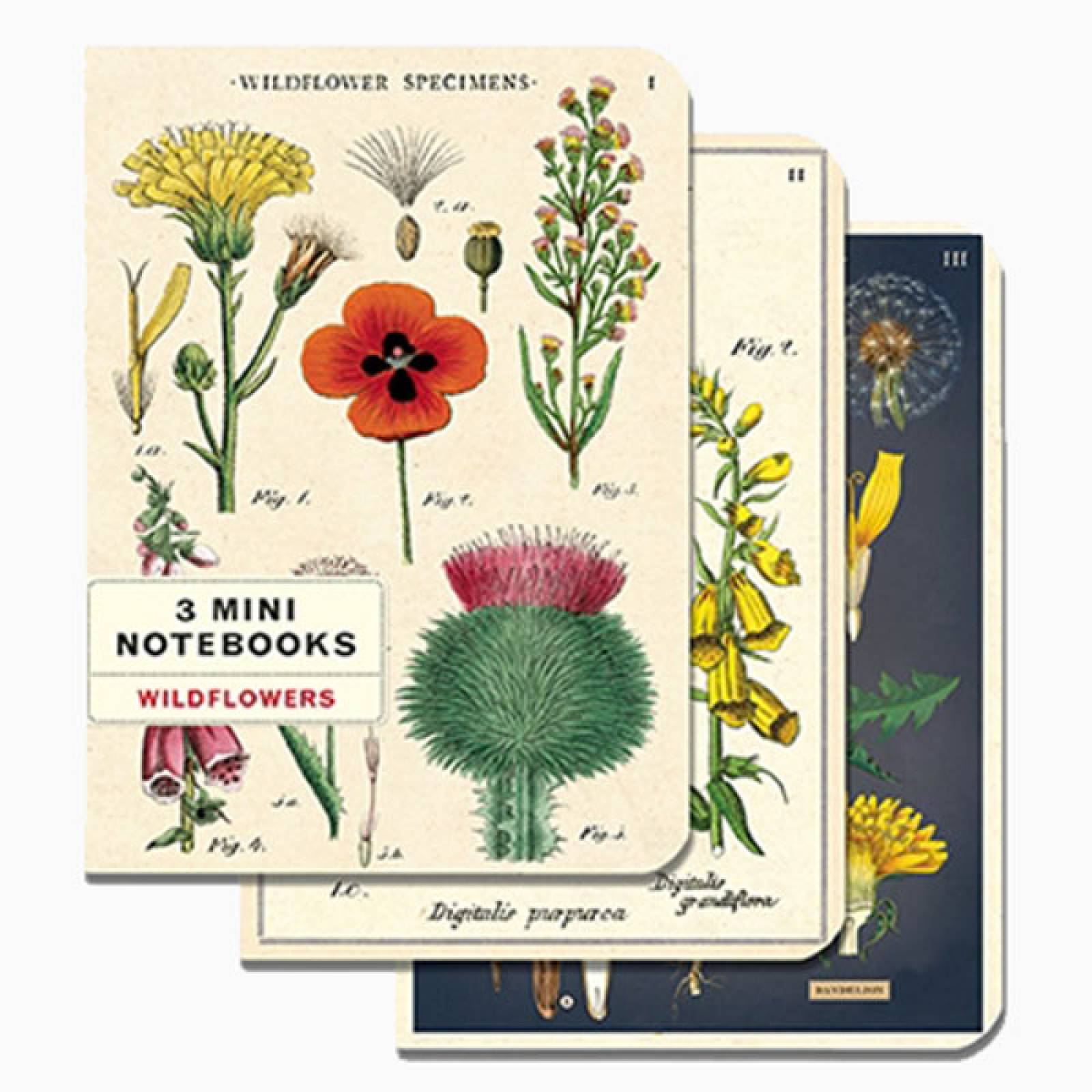 Set Of 3 Mini Notebooks - Wildflowers thumbnails
