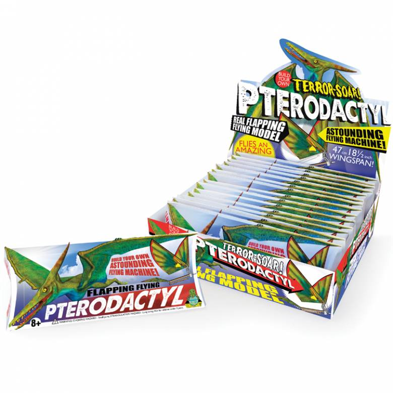Pterodactyl Flying Machine 8yr+