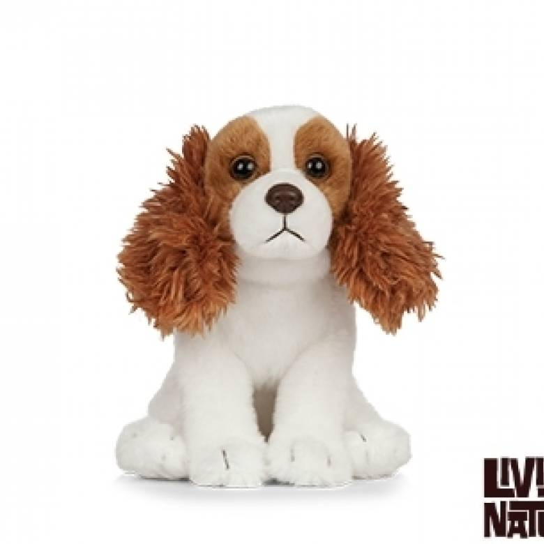 King Charles Cavalier Puppy Soft Toy 0+