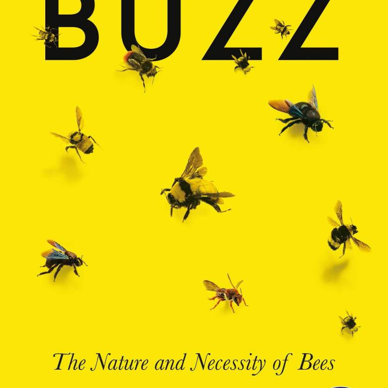 Buzz: The Nature and Necessity of Bees - Paperback Book