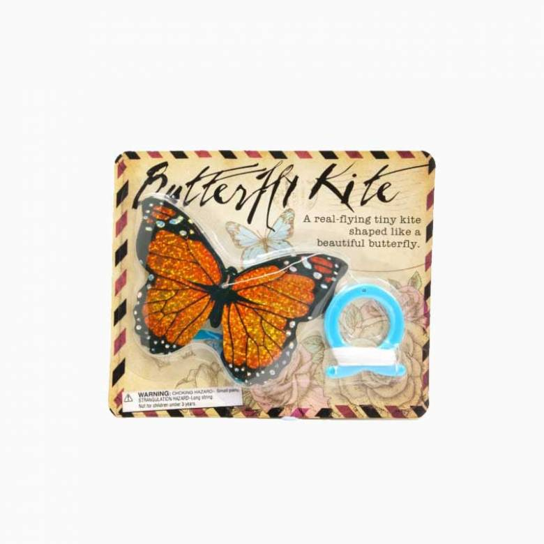 Mini Butterfly Kite 3+