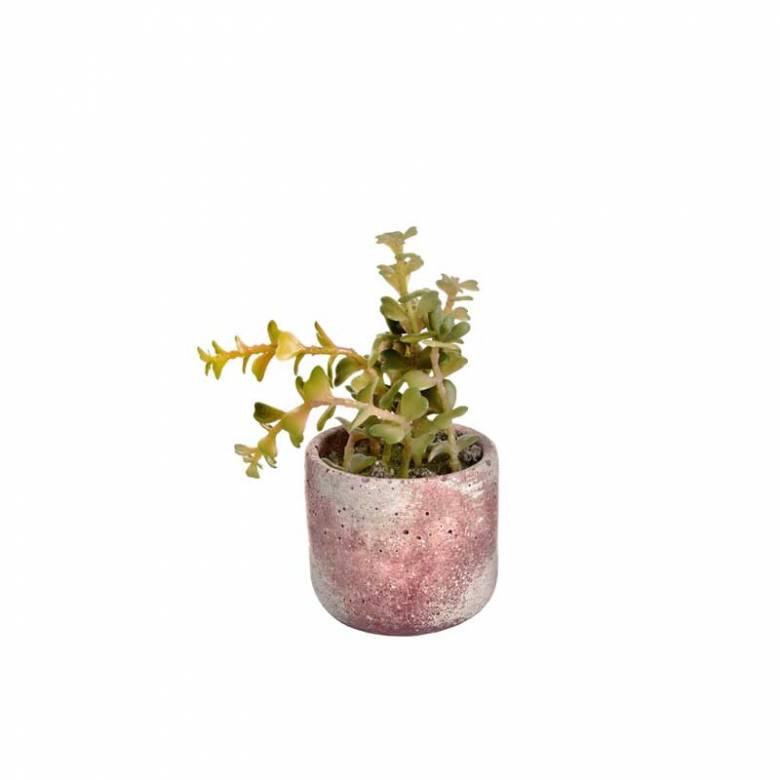 Miniature Potted Artificial Succulent