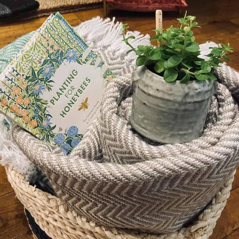 Small Stoneware Flower Pot In Green Lichen