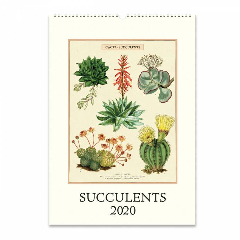 Succulents Wall Calendar By Cavallini