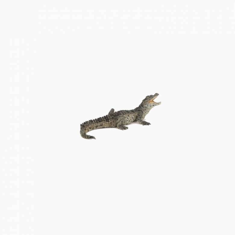 Baby Crocodile - Papo Wild Animal Figure