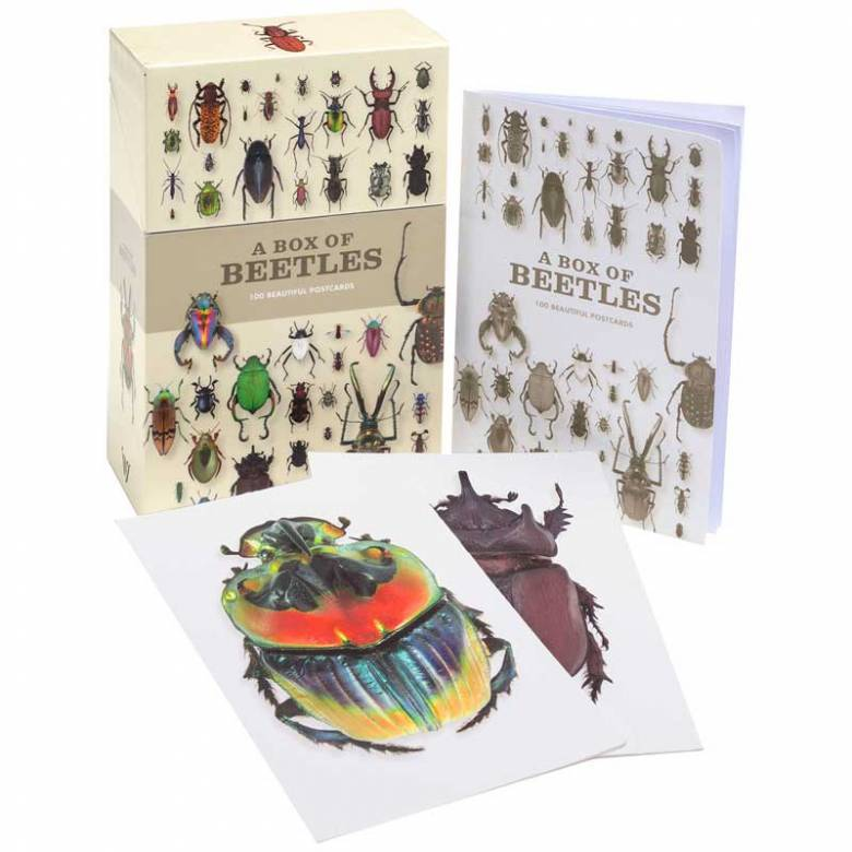 A Box Of Beetles: 100 Beautiful Postcards