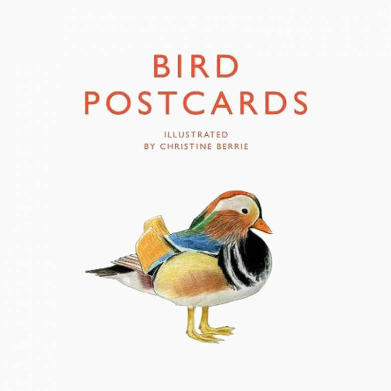 Bird Postcards - Pack Of 21 Postcards