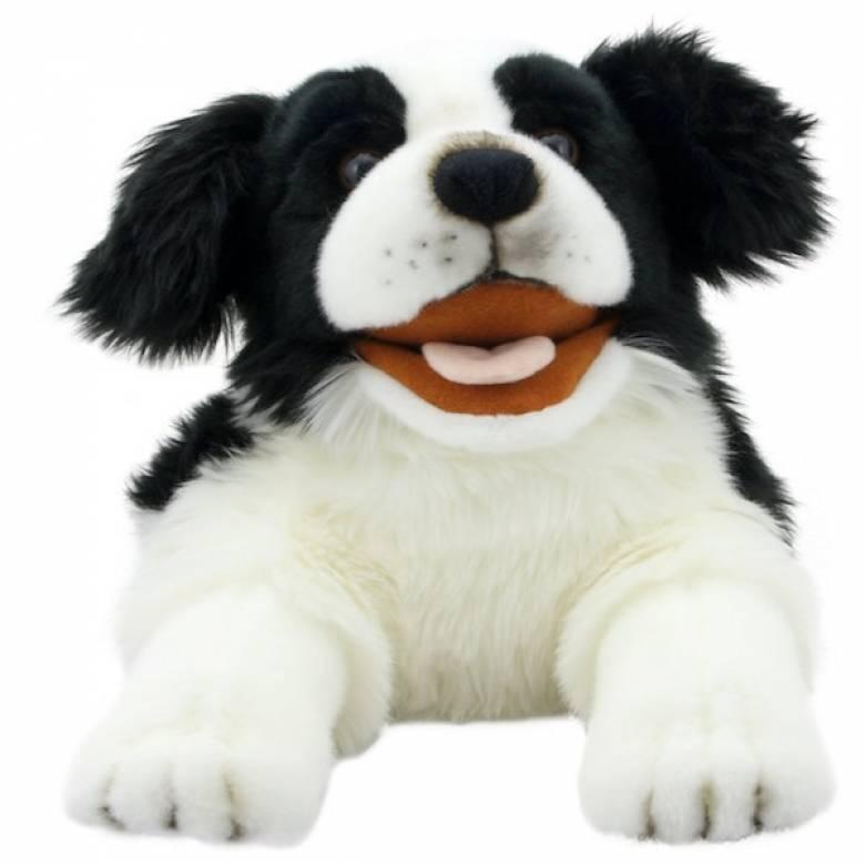 Border Collie Dog Playful Puppy Glove Puppet