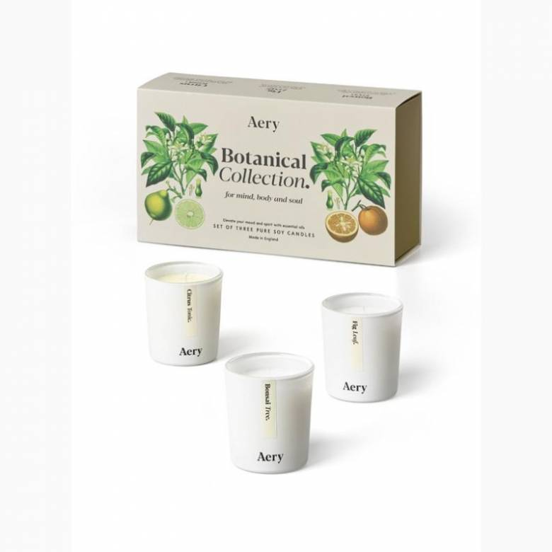 Botanical Gift Set Of 3 Votive Candles By Aery