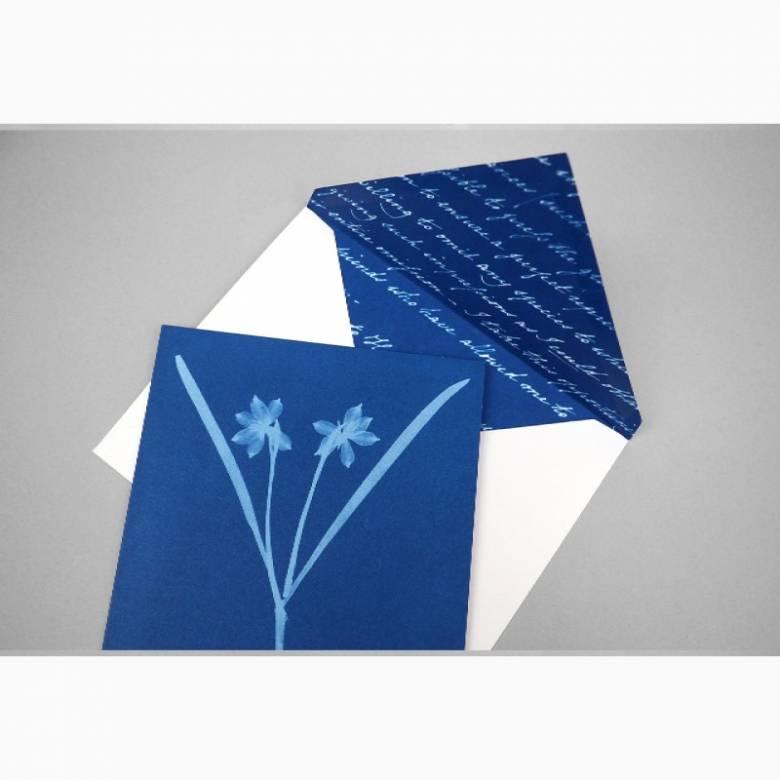 Box Of Sunprint Notecards