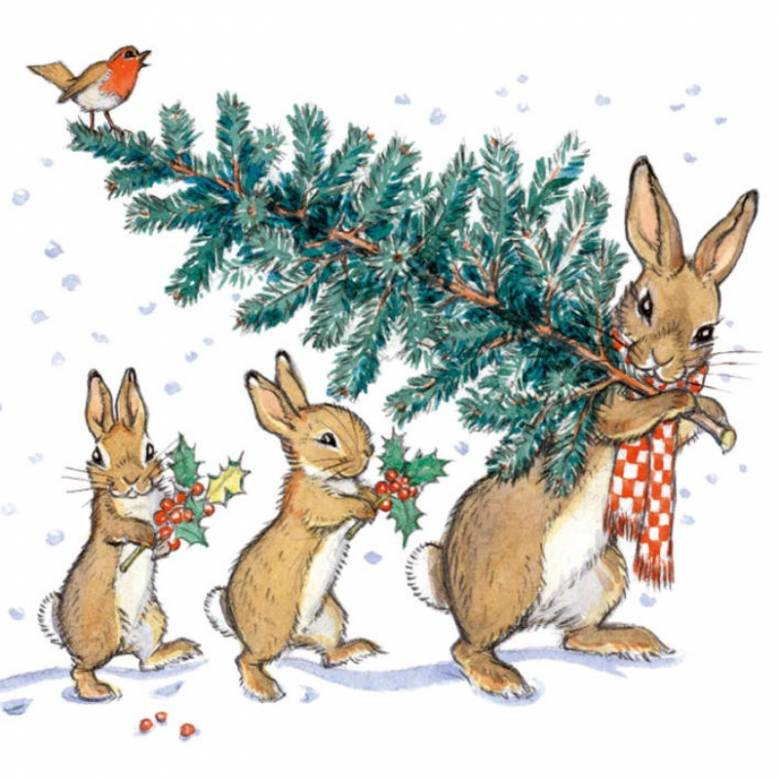 Bringing Home The Tree - Pack Of 8 Christmas Cards By M&G