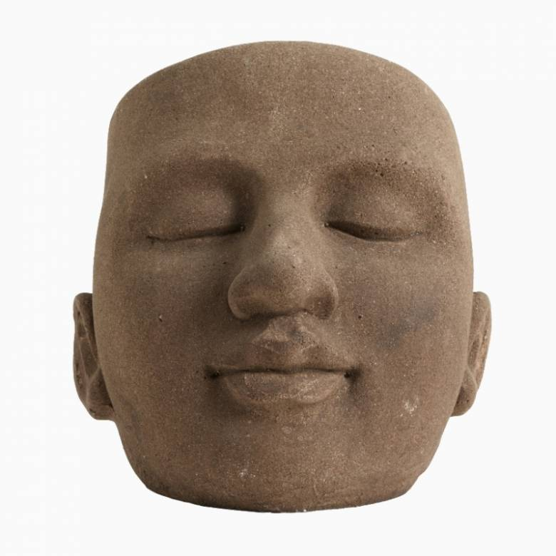 Brown Sculpted Face Plant Pot H:23cm