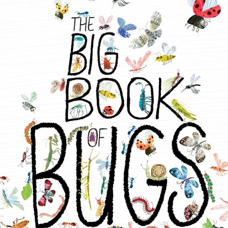 Big Book Of Bugs Hardback Book
