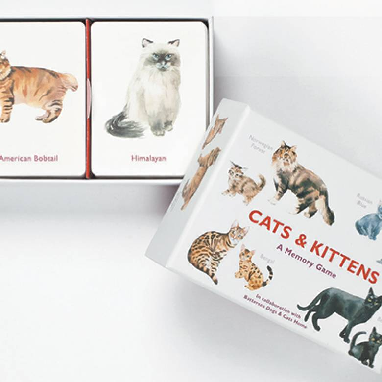Cats And Kittens Memory Game 4+