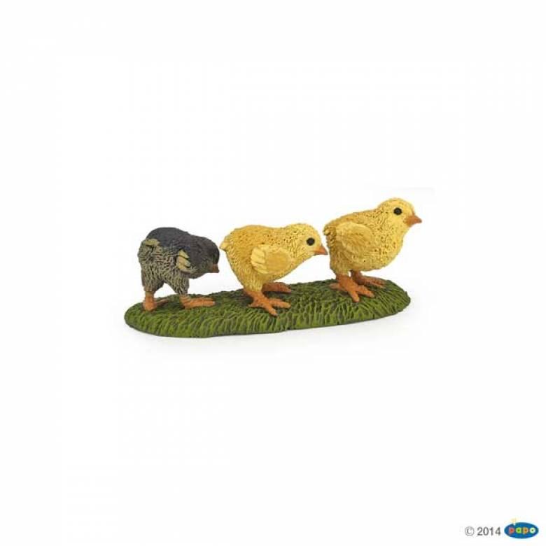 Chicks PAPO FARM ANIMAL