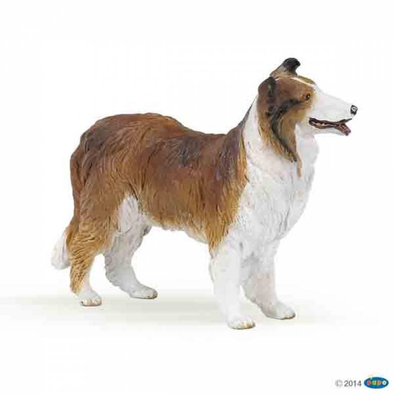 Collie Dog (Brown) PAPO FARM ANIMAL