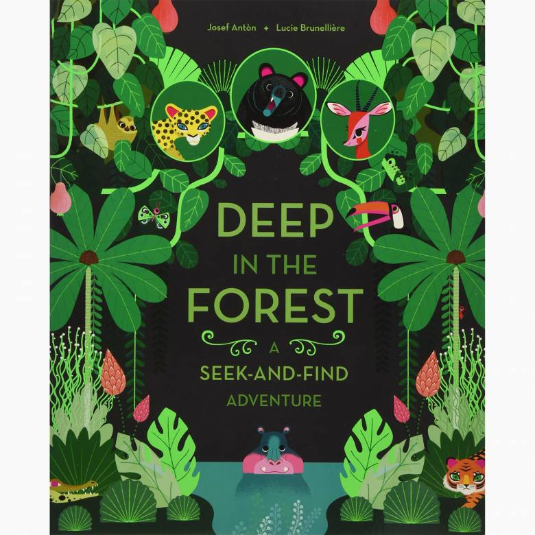 Deep in the Forest: A Seek-and-Find Adventure - Board Book