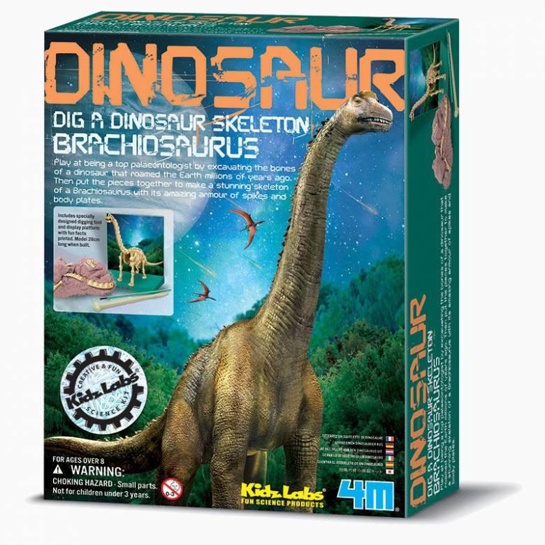 Dig A Brachiosaurus Skeleton Kit - Kidz Labs 8+