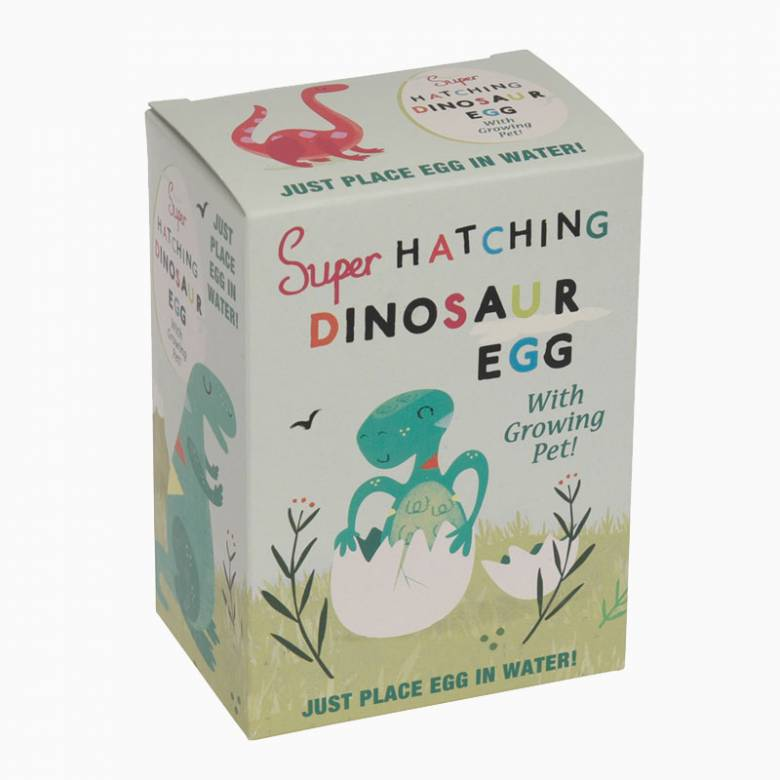 Hatch your Own Dinosaur Egg 3+