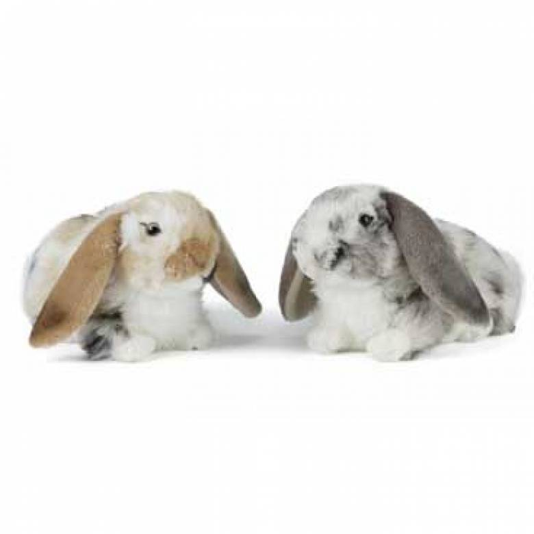 Dutch Lop Eared Rabbit Soft Toy 0+