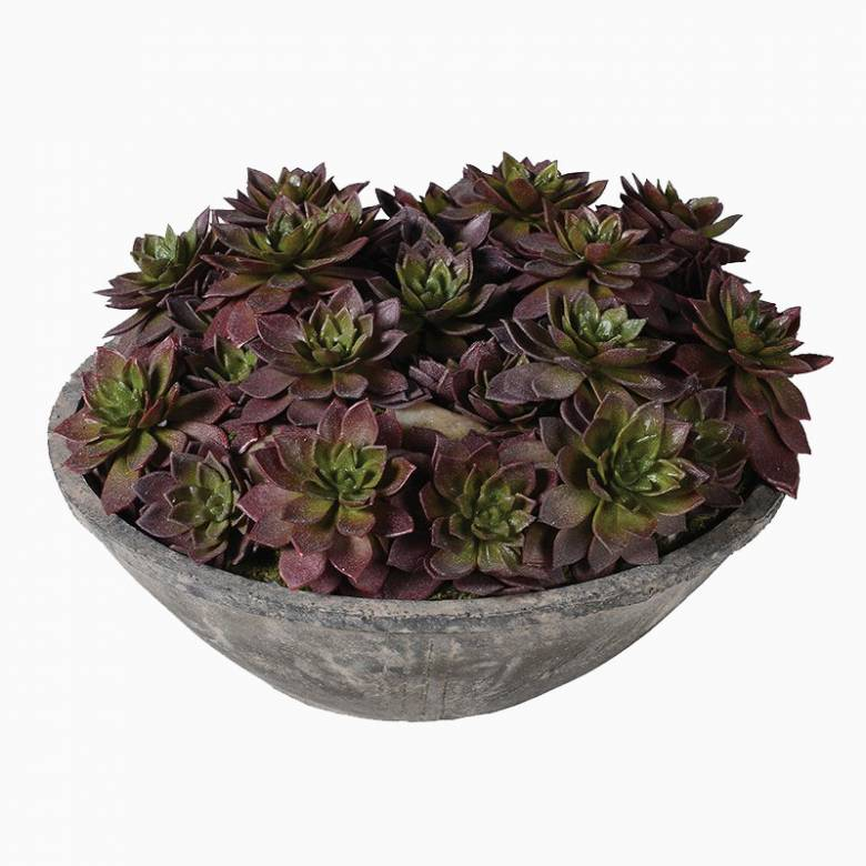 Echeveria Artificial Succulent Plants In Cement Bowl