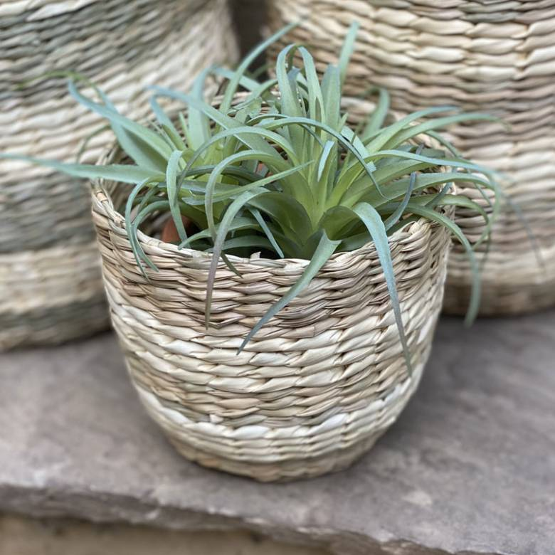 Extra Small Striped Two Tone Striped Basket H:13cm