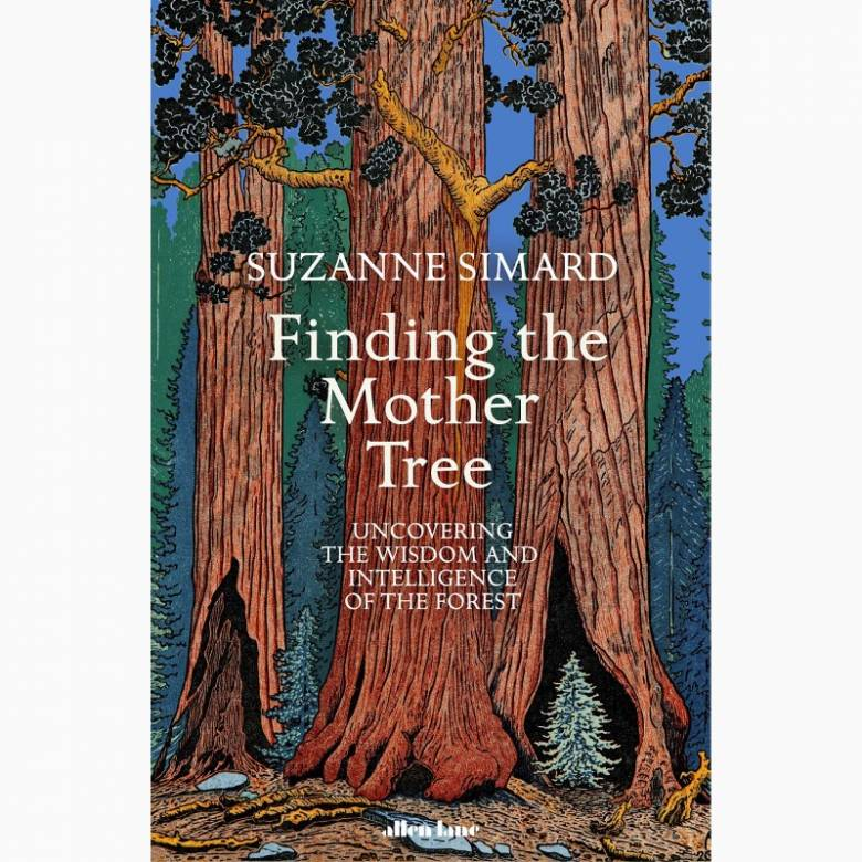 Finding The Mother Tree By Suzanne Simard - Hardback Book