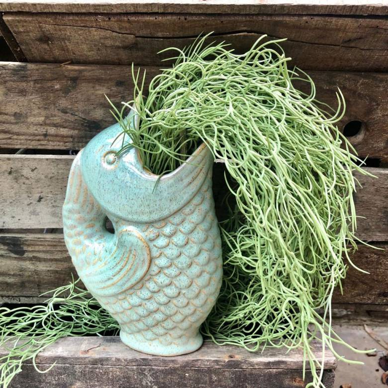 Fish Jug Vase in Sage Green Stoneware
