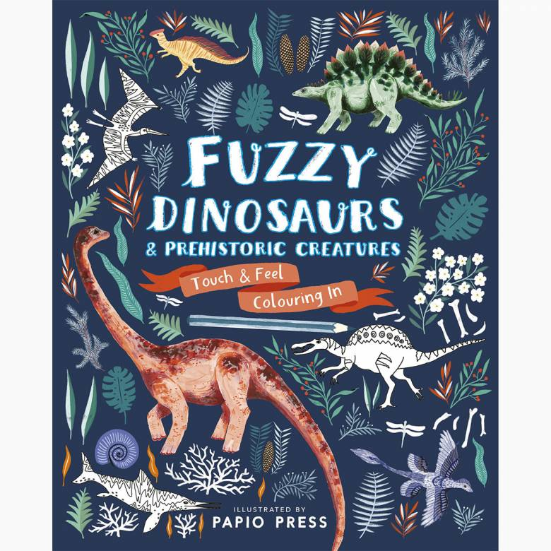 Fuzzy Dinosaurs Colouring Book