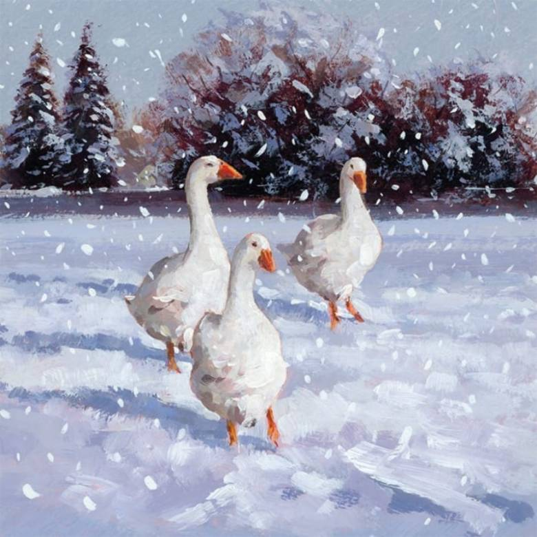 Geese - Pack Of 5 Christmas Cards By Musems & Galleries