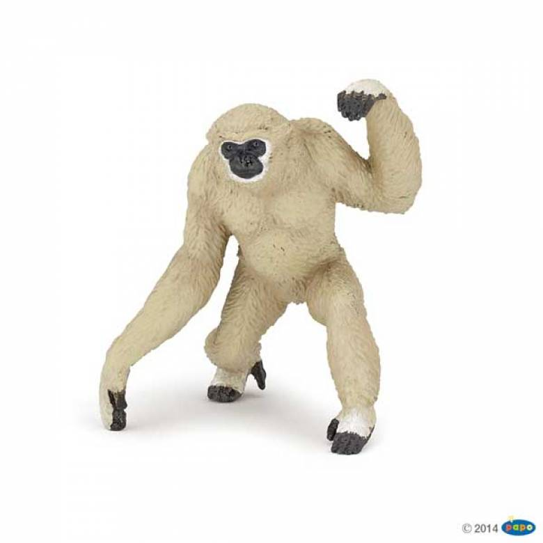 Gibbon PAPO WILD ANIMAL