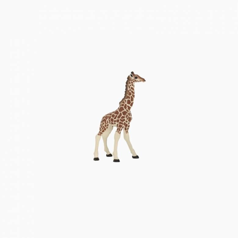 Giraffe Calf - Papo Wild Animal Figure