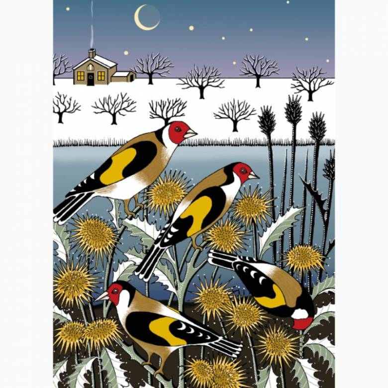 Goldfinch Garden - Pack Of 8 Christmas Cards By M&G