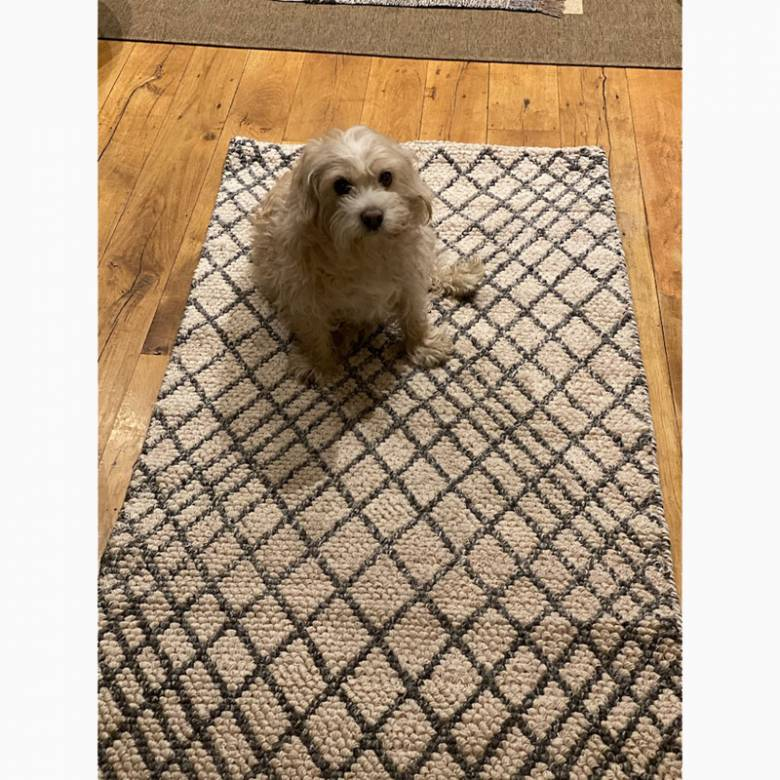 Linear Patterned Grey Runner Rug 250x80cm