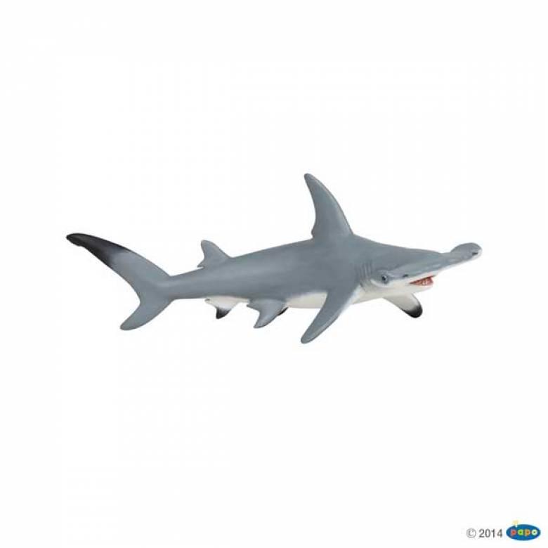 Hammerhead Shark PAPO WILD ANIMAL