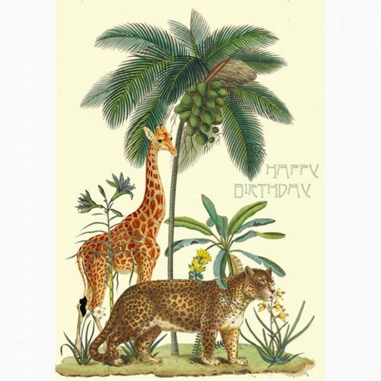 Happy Birthday Coconut Island - Greetings Card