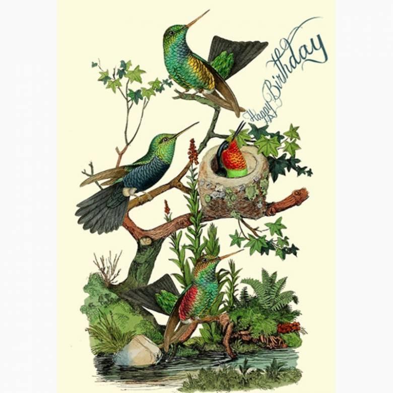 Happy Birthday The Hummingbirds - Greetings Card