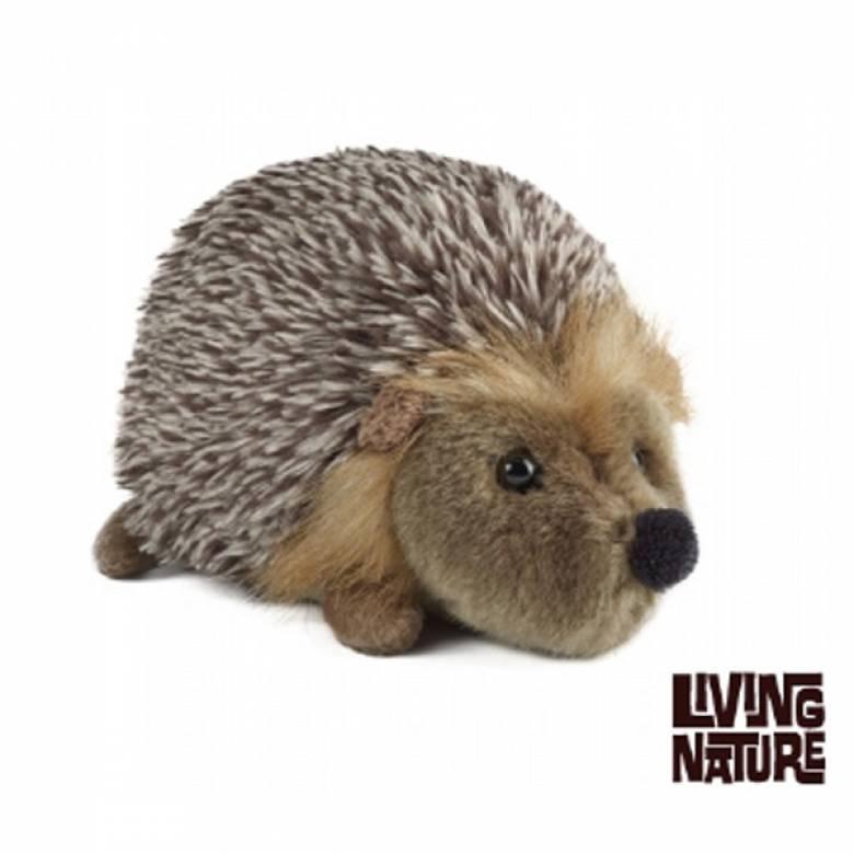Hedgehog Soft Toy 18cm