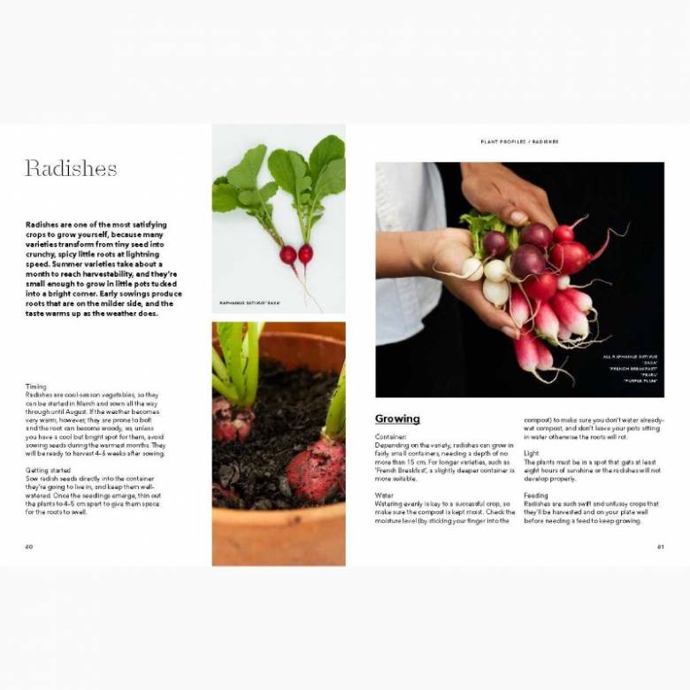 How To Grow Your Dinner Without Leaving The House - Hardback