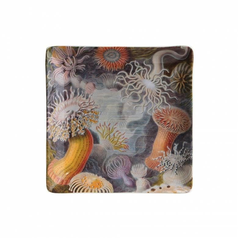 Sea Life Small Trinket Tray