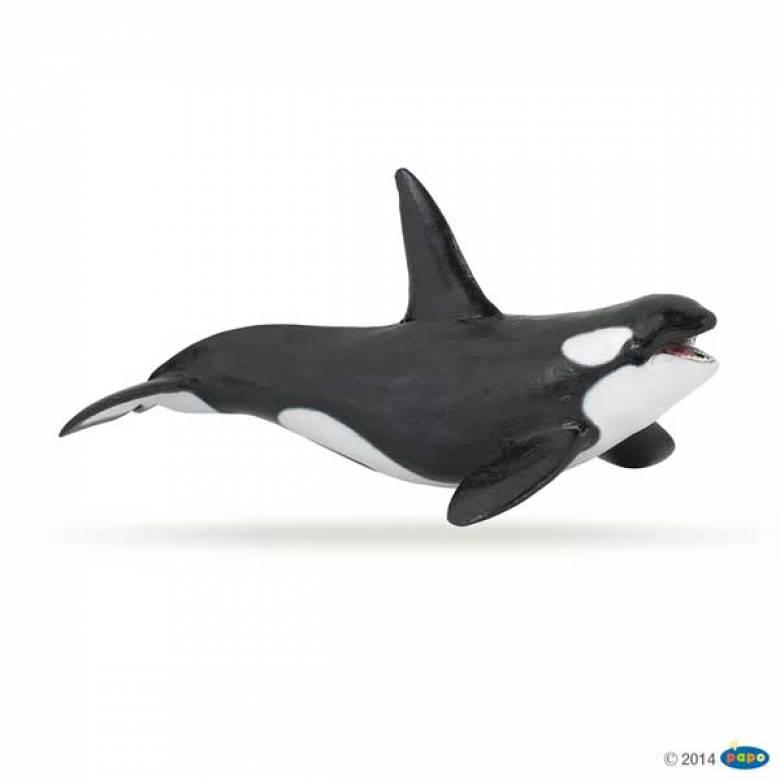Killer Whale PAPO WILD ANIMAL