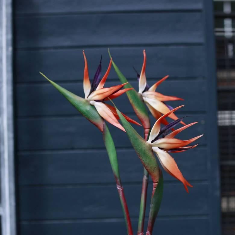 Faux Orange Bird Of Paradise Flower Stem