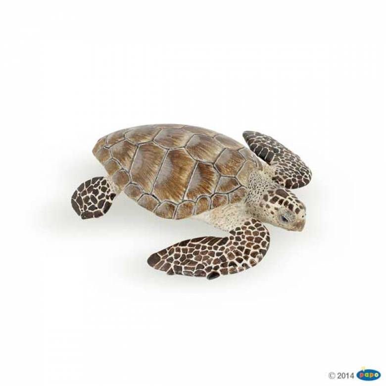 Loggerhead Turtle PAPO WILD ANIMAL