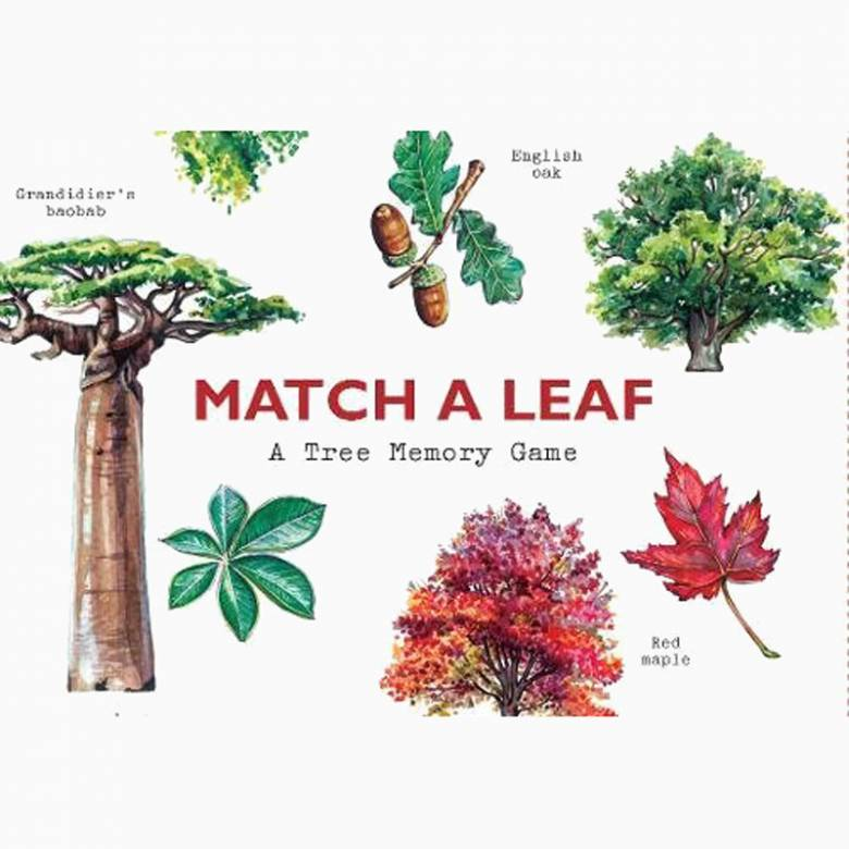 Match A Leaf Tree Memory Game 6+